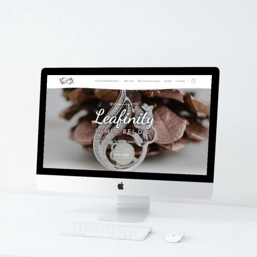 Leafinity-Partner-Webdesign-Webshop-HidenDesign